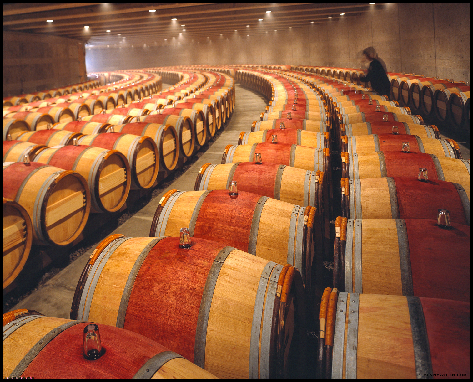 Opus One Cellar